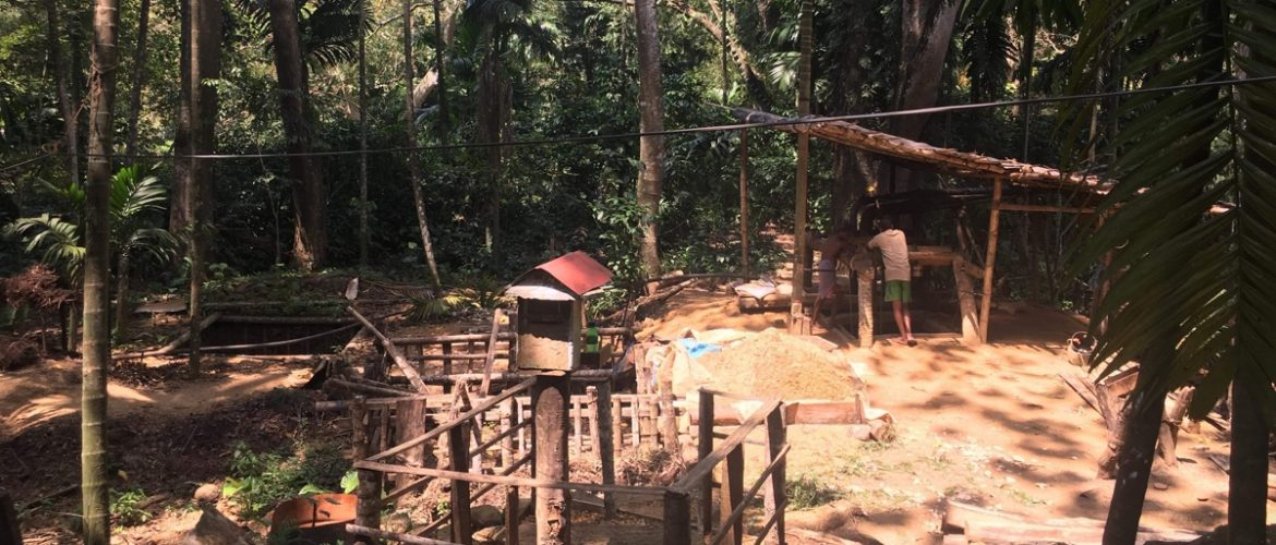 Our 2 new Sapphire mines in Sri Lanka