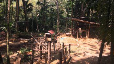 2 New Sapphire Mines in Sri Lanka
