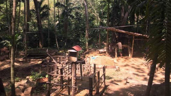 Two (2) New Sapphire Mines in Sri Lanka